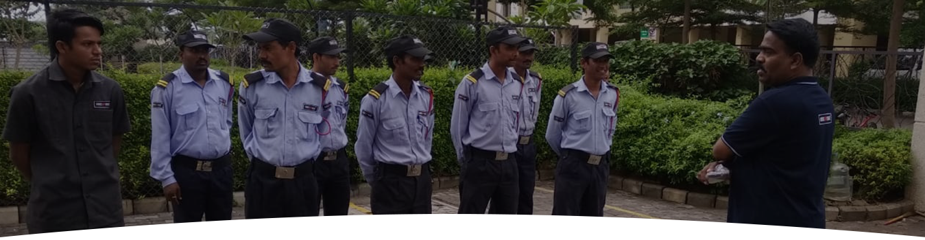 security team of securise